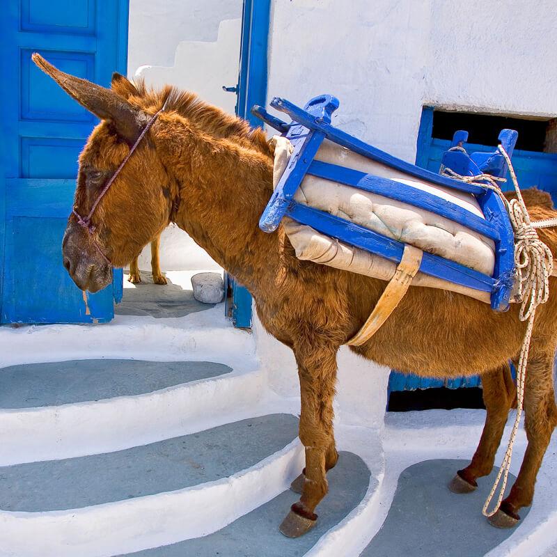 Dream Blue Amorgos